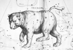 Hevelius' ursa major