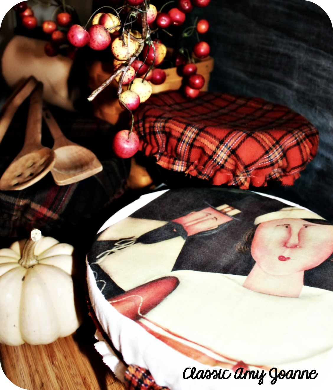 dish cover 8 (2)