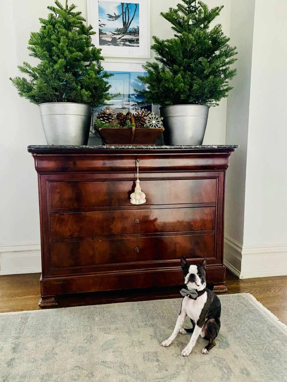 Antique French Dresser with Two Christmas Trees in Foyer