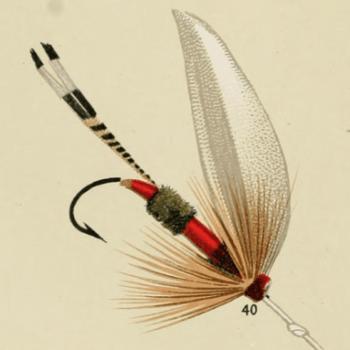 Royal Coachman Lake Fly