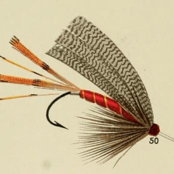Kingfisher Lake Fly