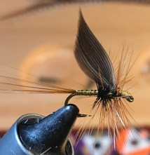 Greenwell's Glory Dry Fly