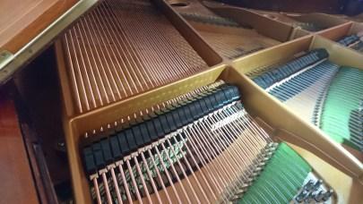 strings_bechstein