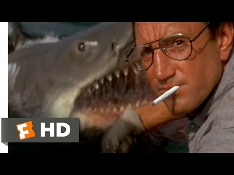 You're Gonna Need a Bigger Boat – Jaws (4/10) Movie CLIP (1975) HD