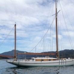 Ailsa anchor