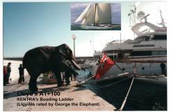 Lloyds A1 certified by George the Elephant