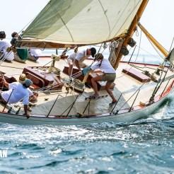 Gleam sail