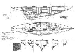 Irene VIII plans