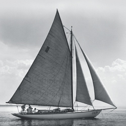 Sister-ship 'Nellie'