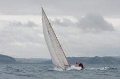 Prize Coming Back From The Mahurangi Classic Yacht Regatta, Auckland, NZ.