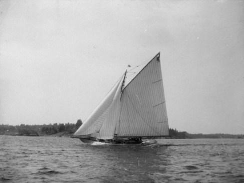 alca 1900