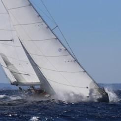 Dorade Corsica Classics 14