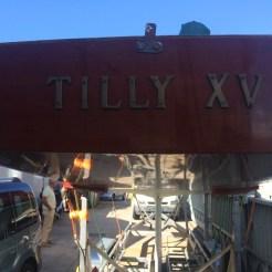 Tilly XV