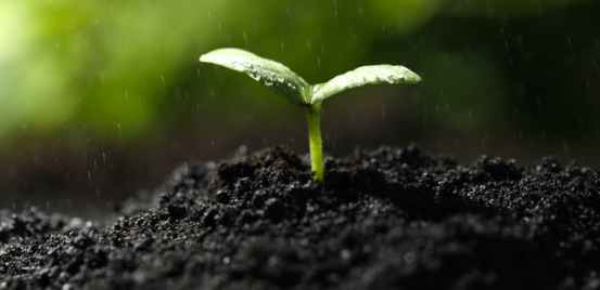 soil types of soil agric science classnotesng