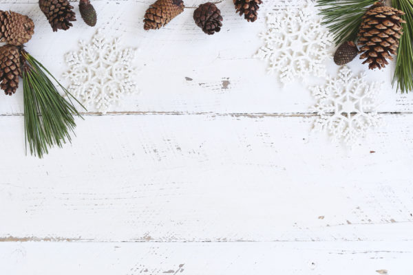 Festive (and Trendy!) Holiday Decor for Your Studio