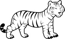 Search Results For Bengal Tiger Clip Art Pictures Graphics Illustrations