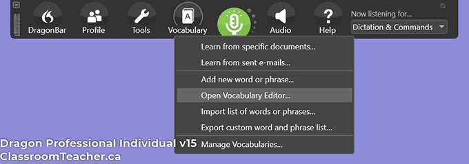 Screenshot of Nuance Dragon Professional Individual v15 - vocabulary menu (Screenshot for Nuance Dragon Home vs Professional 15 review)