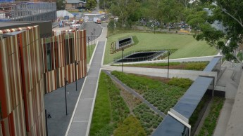Sustainability - Green Roof