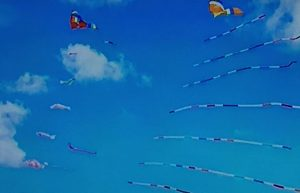 Clatsop County Kite Flying Once Upon A Breeze