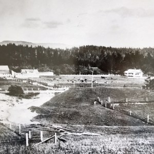 Gearheart Ocean Home Farm off Highway 101