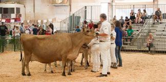 2018 Clatsop County Fair