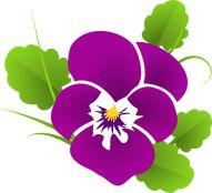 violette vector