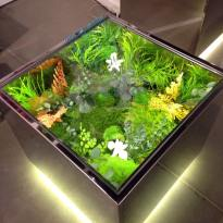 """Cubic Garden"", Claudia Bonollo"