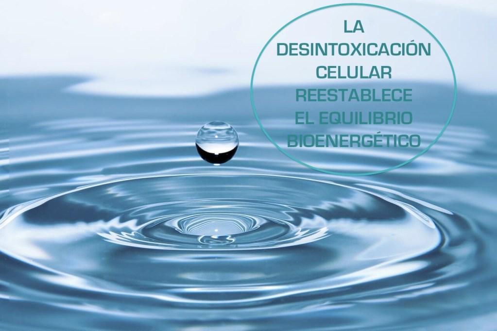 la desintoxicación celular