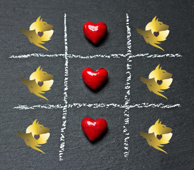 Claudia Boschi - el corazón, el amor, el pericardio... y San Valentín