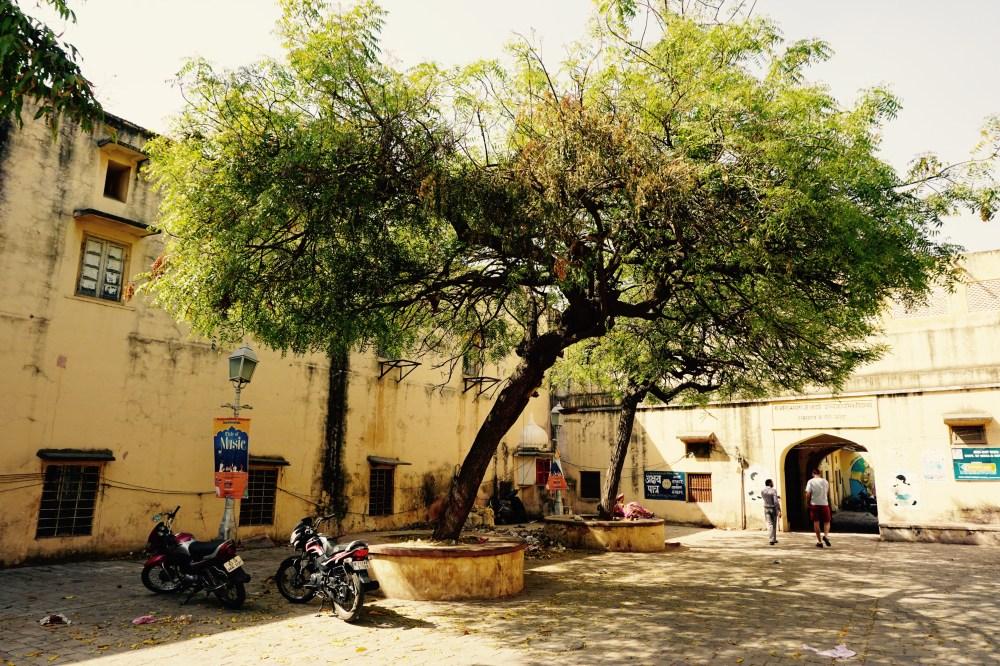jaipur-india-rajasthan