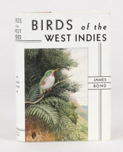 007-birds-of-the-west-indies2