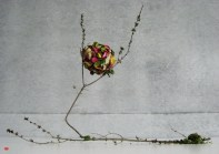 ikebana-01
