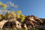 red-rock-canyon_Las-Vegas_07