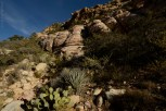 red-rock-canyon_Las-Vegas_10