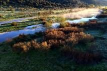 Amanhecer no Rio Almonte