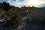 Las Vegas - Red Rock