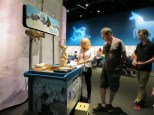 Denver-Museum-Nature-Science_14