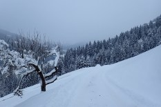 natureza-neve_08