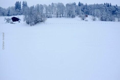 primeira-vez-na-neve_04