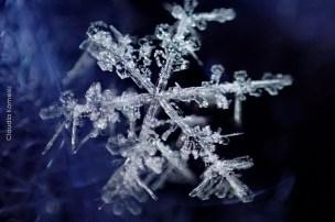 primeira-vez-na-neve_27