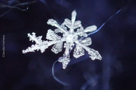 primeira-vez-na-neve_29
