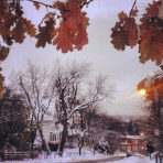 Avenue McCulloch (Outremont)