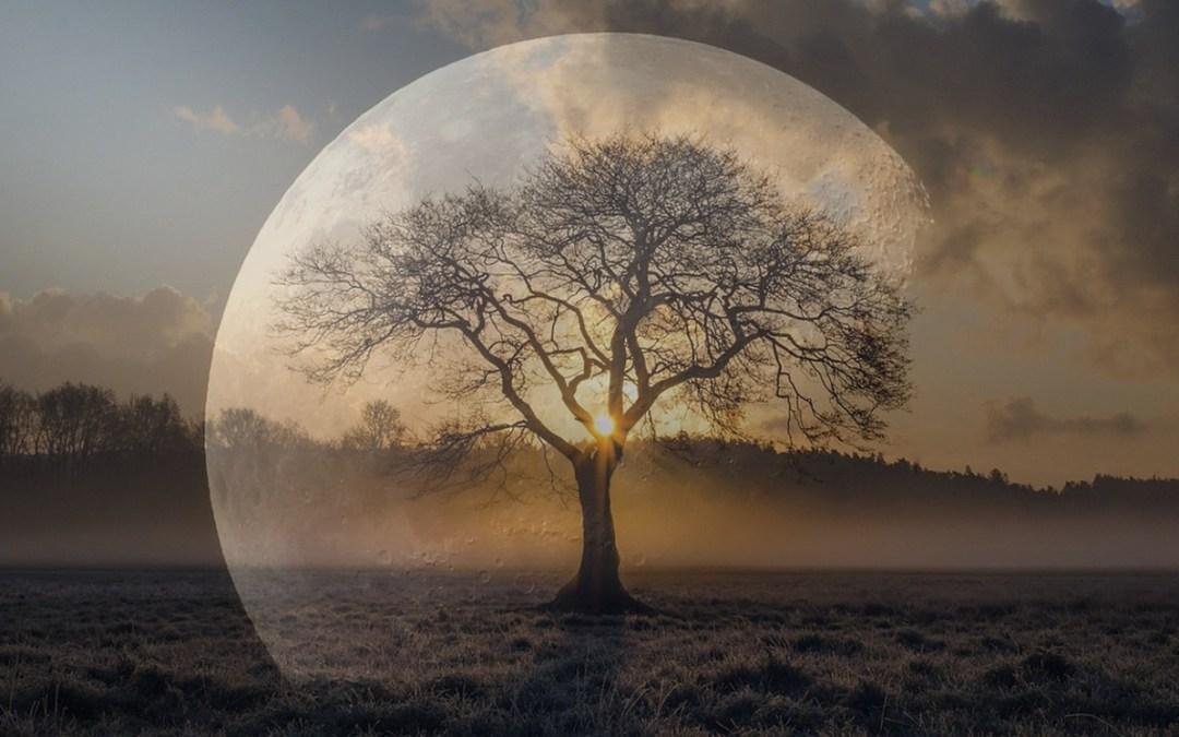 Lua Nova em Capricórnio – Responsabilidade e Compromisso