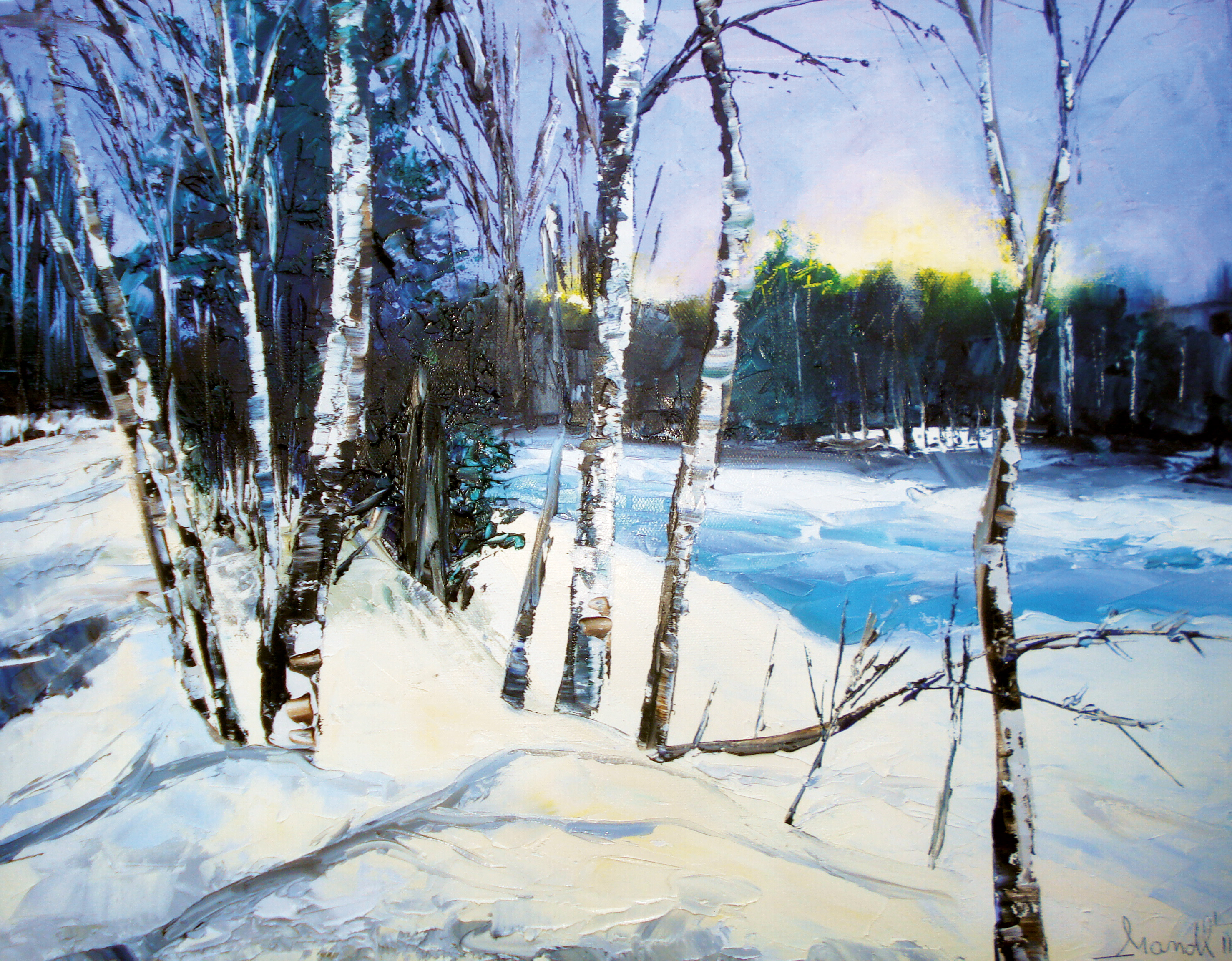 Paysages Dhiver Claudia Mandl