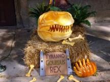 mtw-pumpkins-fest-2-10-16-small