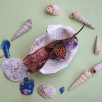 Storie di farfalle morte.