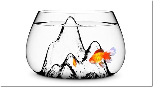 fishscape-1