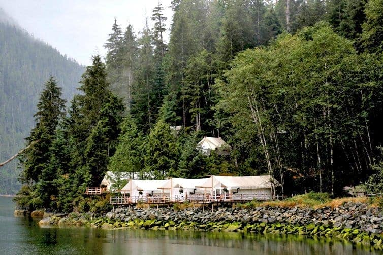 glamping tents at clayoquot wilderness resort