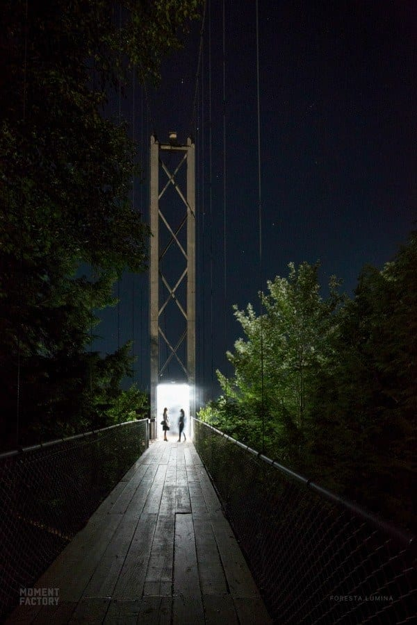 Embrace the magic of the night at Vallea Lumina Whistler, British Columbia. Explore hidden wonders and wind through enchanted forests during the night walk.