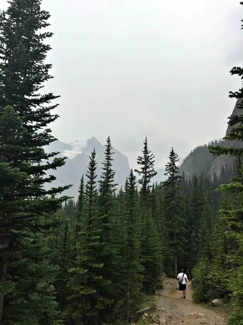 man walking down mountain on Banff Teahouse hike